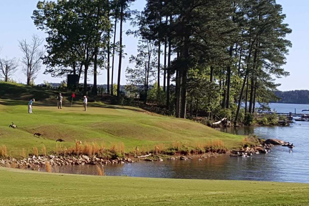 Timberlake GC South Carolina