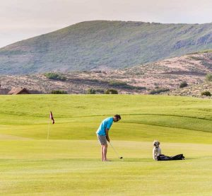 A man and a dog on the Golf Park at Red Ledges