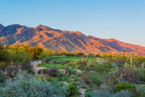 La Paloma Golf Course