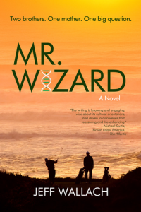 Mr Wizard Book cover